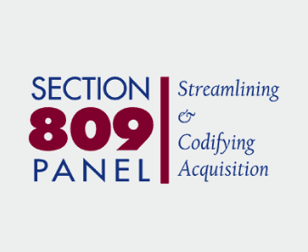 Section 809 Panel,